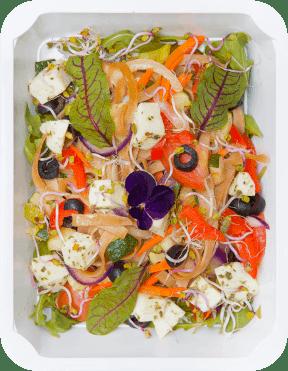 catering pudełkowy - dieta wegetariańska